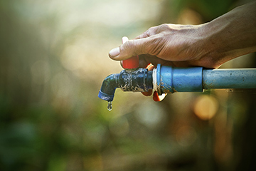 8 tips on saving water